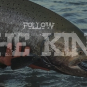 Follow-The-King-Trailer