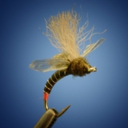 Fripple-2.0-Baetis-Mayfly-Cripple-by-Curtis-Fry