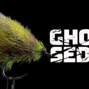 Ghost-Sedge