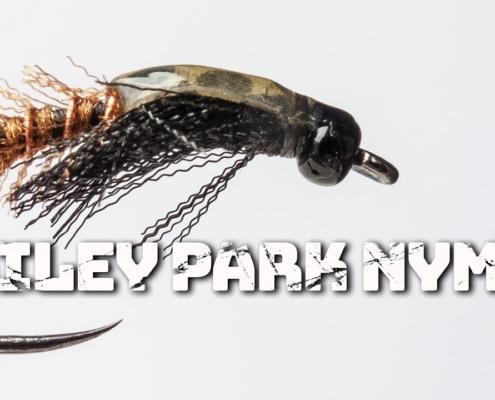 Hailey-Park-Nymph