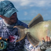 How-To-Catch-A-Triggerfish-On-Fly