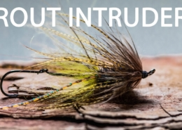 How-To-Tie-A-Trout-Spey-Intruder-Mini-Trout-Intruder-Streamer-Fly