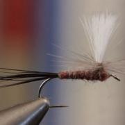 Isonychia-Parachute
