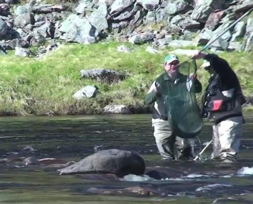 Kharlovka-Litza-Rynda-Salmon-Fishing-on-the-Kola-Peninsula
