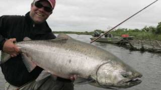 King-Salmon-on-the-fly-at-Alaska-West-Camp-Kanektok-River