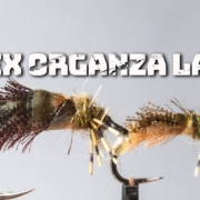 Latex-Organza-Larva