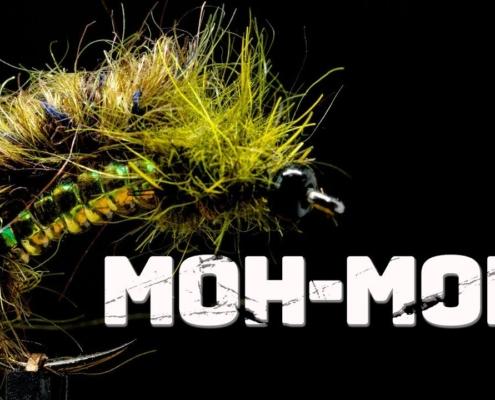 Moh-Moh