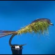 Pheasant-Tail-variant-Nymph