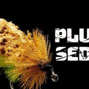 Plush-Sedge