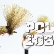 Poly-IOBO