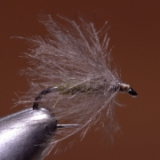 Puff-Daddy-Blue-Winged-Olive