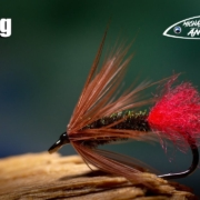 Red-Tag-classic-wet-fly-tying