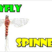 Rusty-Mayfly-Spinner-by-Fly-Fish-Food