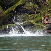 SPRING-RUN-by-Todd-Moen-Steelhead-Fishing