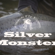 Silver-Monsters