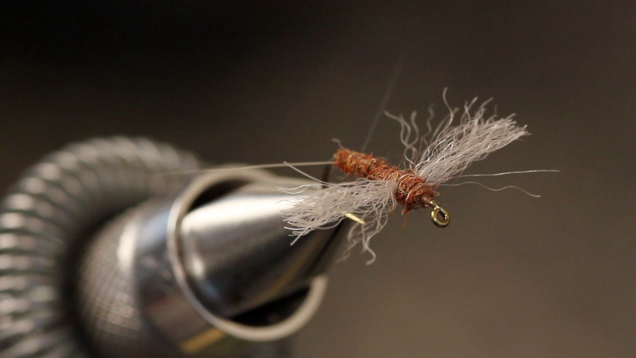 Snowshoe-Wing-Rusty-Spinner