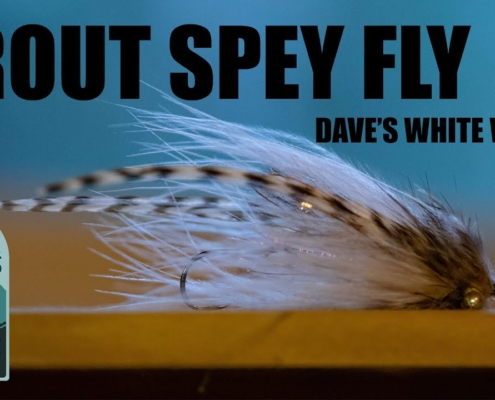 Trout-Spey-Fly-Tying-Daves-White-Widow-Trout-Spey-Streamer