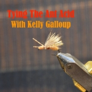 Tying-The-Ant-Acid-with-Kelly-Galloup