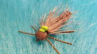 Tying-a-Detached-Bodied-Stonefly-with-Martyn-White-dry-fly