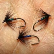 Tying-a-Orange-Peacock-Spider-Wet-Fly-by-Davie-McPhail