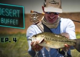 Desert-Buffet-Bass-Fly-Fishing-UNDERWATER-Bluegill-Action