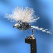 Fly-Tying-a-Blue-Dun-Stuck-N-Muck-with-Jim-Misiura