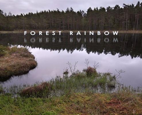 Forest-Rainbow