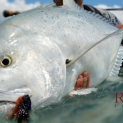 Giant-Trevally-Fishing-Tips-and-Gear-for-Christmas-Island