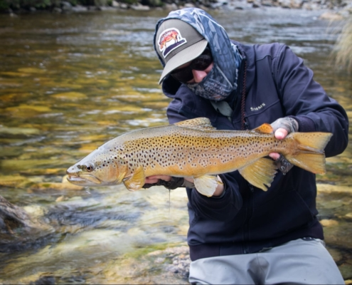 NZ-Fly-Fishing-Traveltruly-Presents-When-Stars-Align