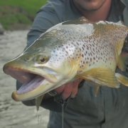New-Zealand-Fly-Fishing-Traveltruly-Presents-New-Beginnings