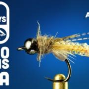 Nitro-Caddis-Pupa-Fly-Tying