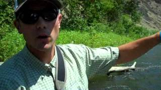 Sage-ONE-Trout-Spey-Rod-Review-and-Casting-Tips