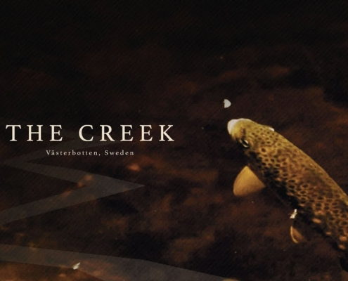 The-Creek