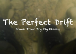 The-Perfect-Drift-Dry-Flies-Brown-Trout-May-2019
