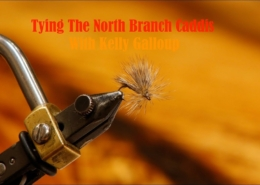 Tying-The-North-Branch-Caddis-with-Kelly-Galloup