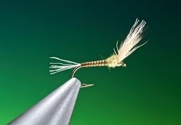 Tying-a-Baetis-sparkle-wing-with-Barry-Ord-Clarke