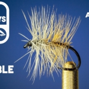 Bivisible-Fly-Tying