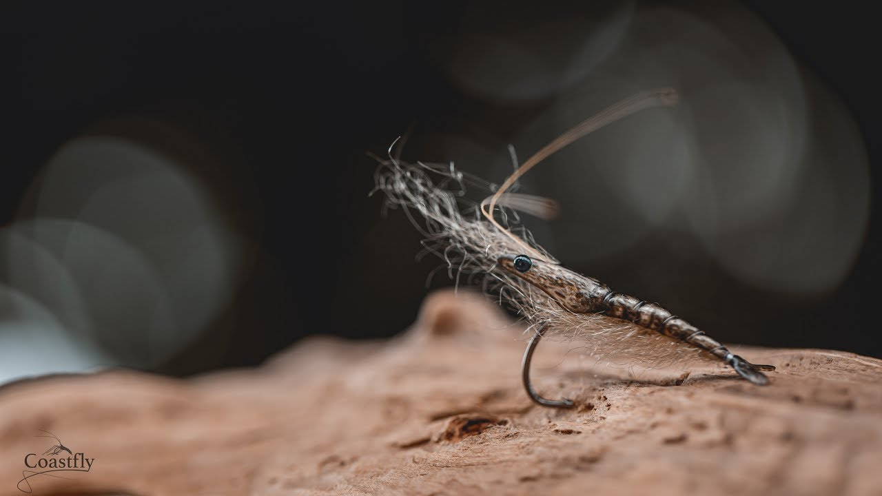 FLY-TYING-Pro-Shrimp-TUTORIAL