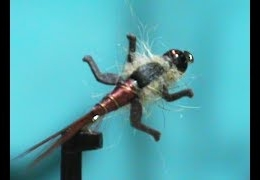 Fly-Tying-a-Nymph-About-To-Hatch-with-Jim-Misiura