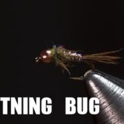 Lightning-Bug