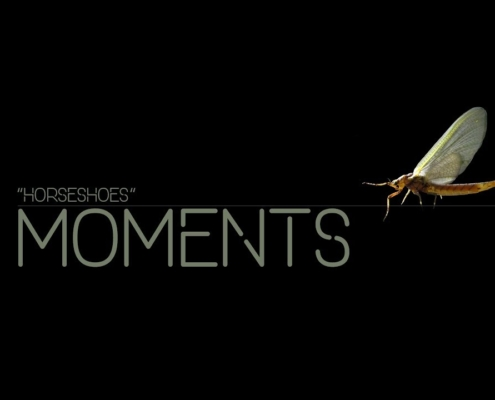 MOMENTS-02-Horseshoes