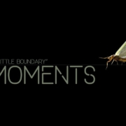 Moments-03-A-Little-Boundary