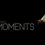 Moments001-Bazinga