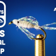 Mysis-Crystal-Shrimp-Fly-Tying