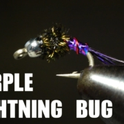 Purple-Lightning-Bug