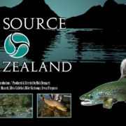 The-Source-New-Zealand