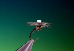 Tying-a-SBT-with-Barry-Ord-Clarke