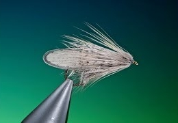 Tying-the-Great-grey-caddis-with-Barry-Ord-Clarke