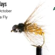 Beadhead-October-Caddis-Pupa-Fly-Tying