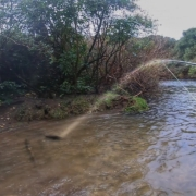 Catching-Heaps-of-Trout-in-local-stream